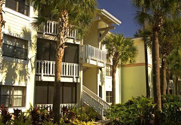 Sheraton Vistana SPA Resort in Orlando Fl - Image 1 - Orlando - rentals