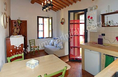 Casa Gladiolo I - Image 1 - Riparbella - rentals
