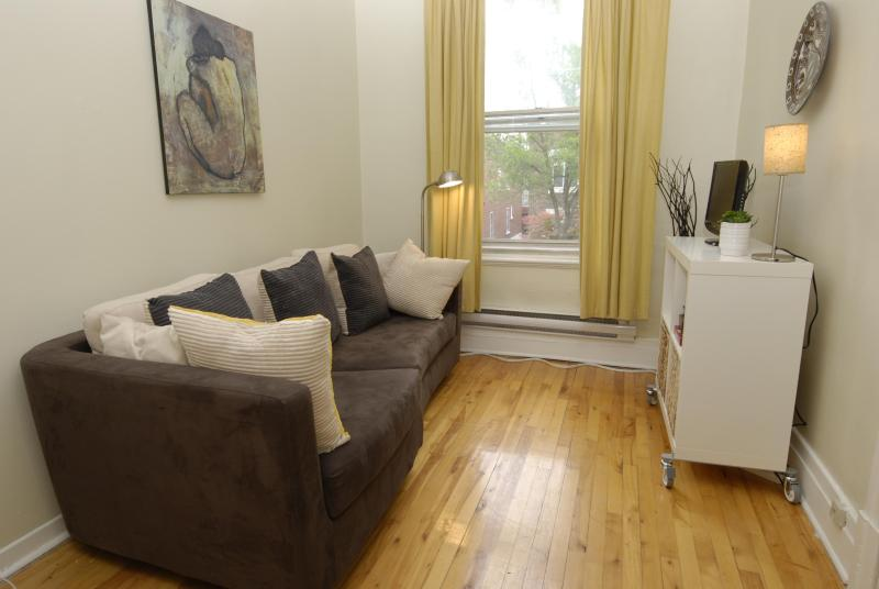 Comfy couch - Live like a true Montrealer 20 min from downtown - Montreal - rentals