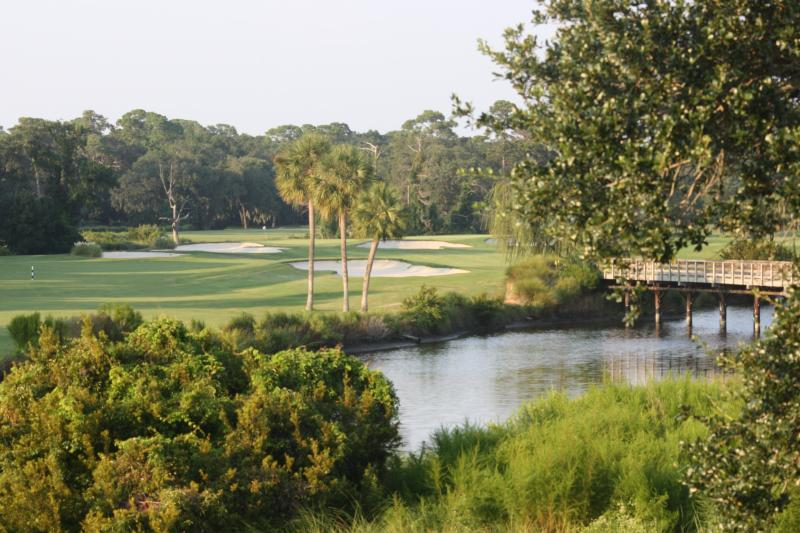 Breathtaking Golf and Lagoon Views from Villa - Breathtaking Views from Palmetto Dunes Villa! - Hilton Head - rentals