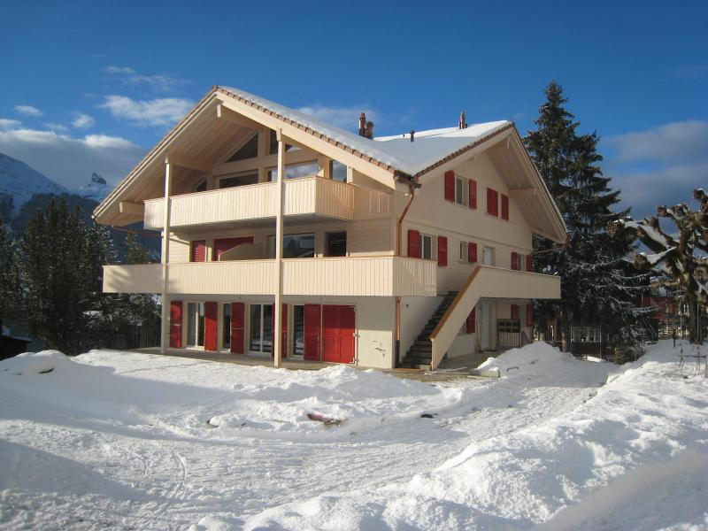 Winter - Wonderful Swiss Mountain Chalet Apartment - Wengen - rentals