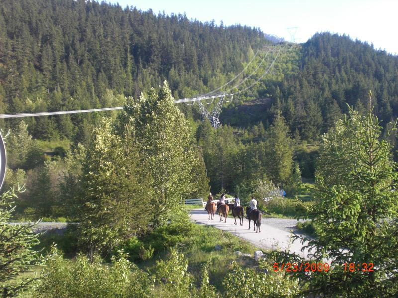 Unobstructed mountain views - Pemberton Mountainside Oasis - Pemberton - rentals