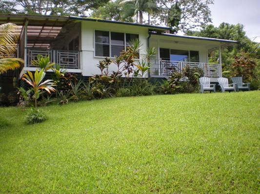 Huge sunny front yard overlooking the jungle - The Jungle Farmhouse - Come see the LAVA FLOW! - Pahoa - rentals