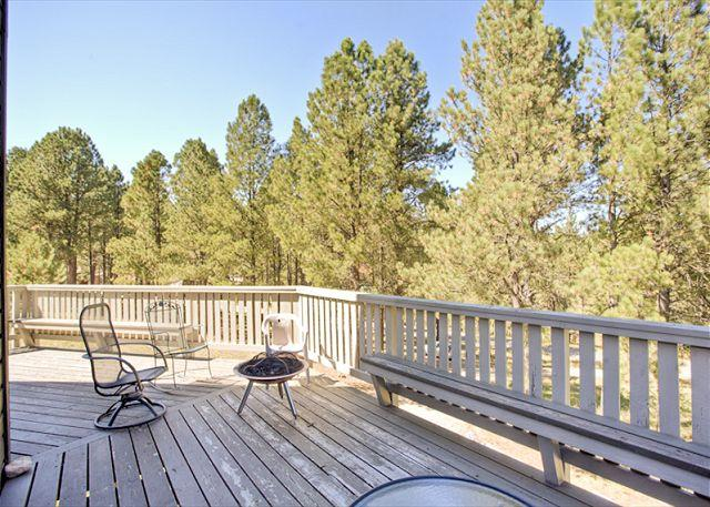 Angel Fire 4 BR & 3 BA House (HO 75) - Image 1 - Angel Fire - rentals