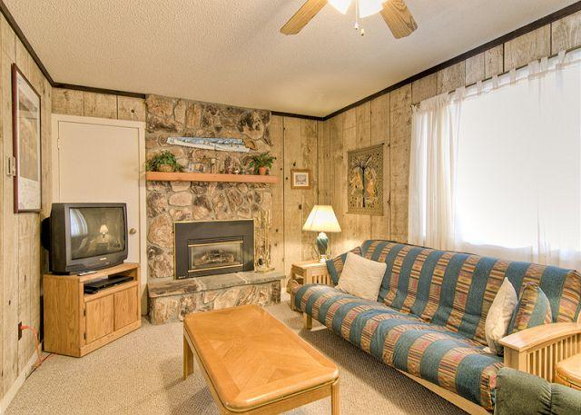 Super 2 BR & 1 BA House in Angel Fire (PT 213) - Image 1 - Angel Fire - rentals