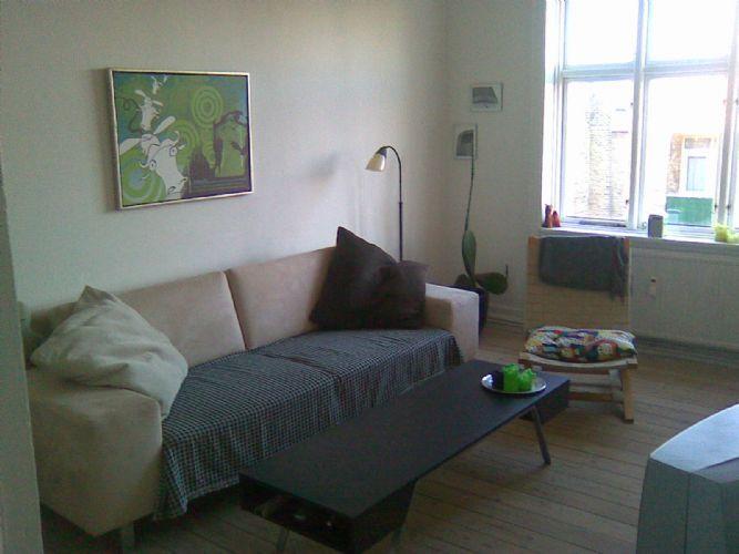 Lundingsgade Apartment - Copenhagen apartment close to the lakes & Faelledparken - Copenhagen - rentals