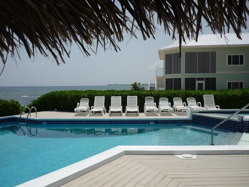 "Poolside under the palapa - ""A Mid-Winter Night's Dream"" - Direct Oceanfront!! - Grand Cayman - rentals"
