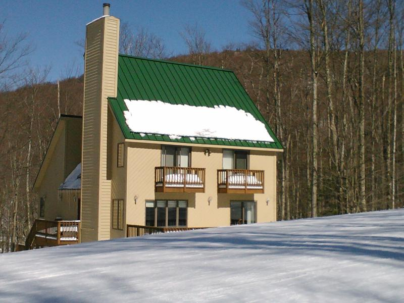 Ski In Ski Out Location - Canaan Valley Slopeside Ski In Ski Out Chalet - Canaan Valley - rentals