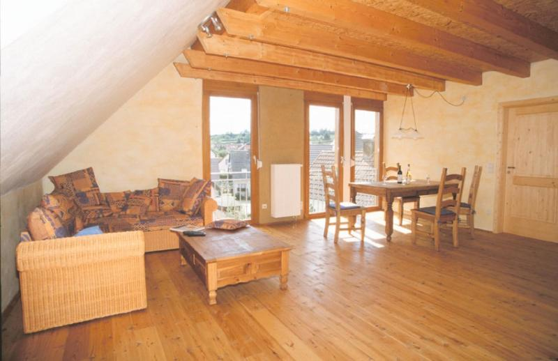 Vacation Apartment in Eichstetten am Kaiserstuhl - 721 sqft, located near vineyard, peaceful, cozy,… #132 - Vacation Apartment in Eichstetten am Kaiserstuhl - 721 sqft, located near vineyard, peaceful, cozy,… - Eichstetten am Kaiserstuhl - rentals