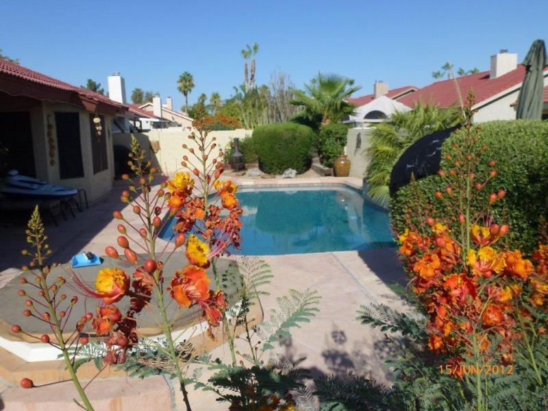 New PebbleTec Pool through Paradise - Luxury 4 Bed 2 Bath & Private Heated Pool and Spa - Scottsdale - rentals