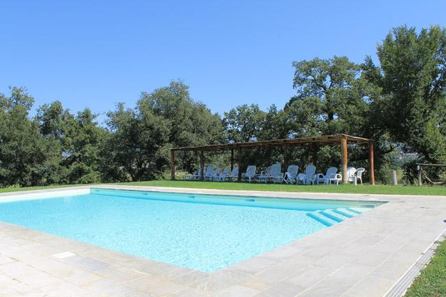 AZZURRO APARTMENT private garden / pool - Image 1 - Pergine Valdarno - rentals