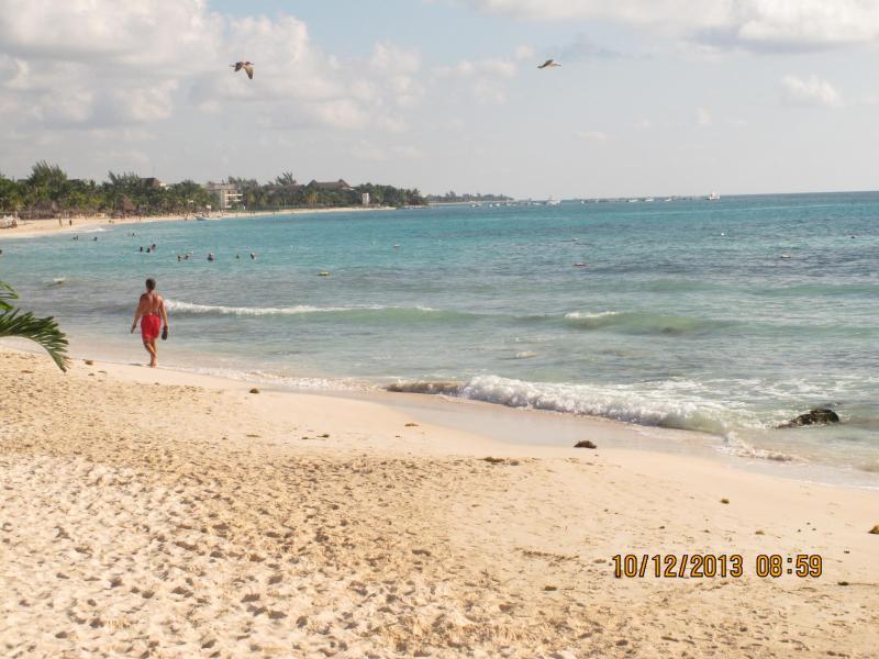 PLAYA..MAR..BEACH..PARADISE* - HILHAVEN*PLAYA* 1 BLOCK TO THE BEACH* ONE BEDROOM* - Playa del Carmen - rentals