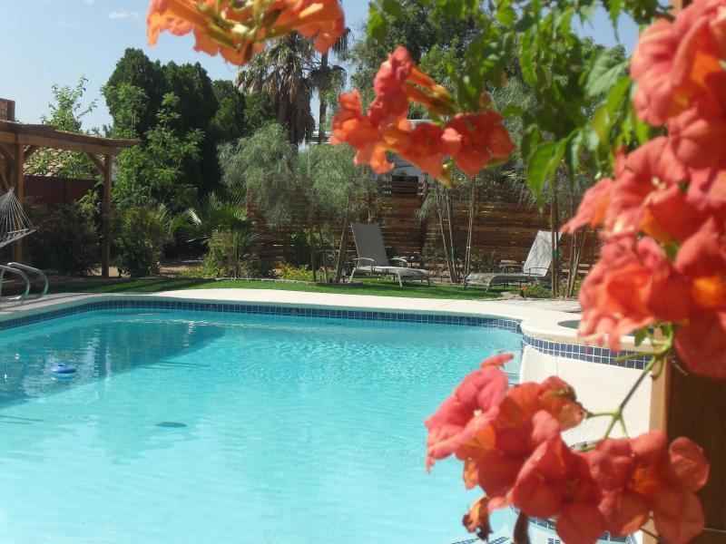 Large heated pool - Sunlit Villa - Sophisticated, Luxurious - Las Vegas - rentals