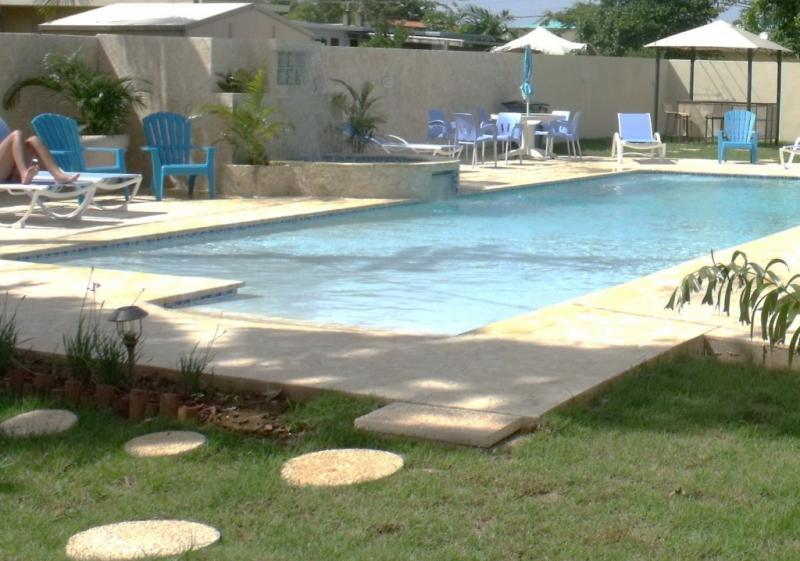 Pool Area - PALMAS VACATION RENTALS/ DOLPHIN VILLA - Aguadilla - rentals