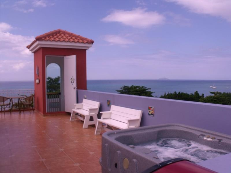 Sea view terrace with jacuzzi, bbq, sunbed, picnic table - Sky View Penthouse, Private terrace  BBQ & Jacuzzi - Rincon - rentals