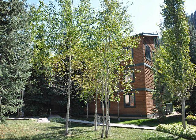 Timber Falls Building 15 - Timber Falls Three bedroom two bathroom remodeled condo in East Vail - Vail - rentals