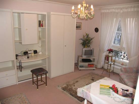 Vacation Apartment in Baden Baden - nice, clean (# 253) #253 - Vacation Apartment in Baden Baden - nice, clean (# 253) - Baden-Baden - rentals