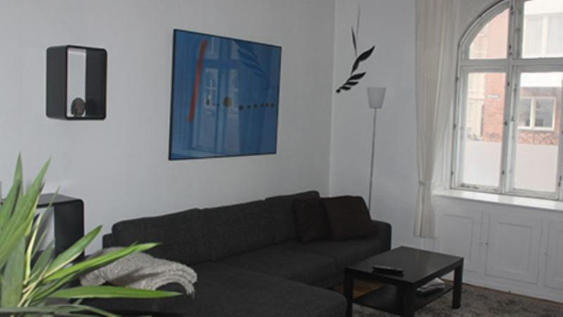 Koldinggade Apartment - Large Copenhagen apartment close to park and cafes - Copenhagen - rentals