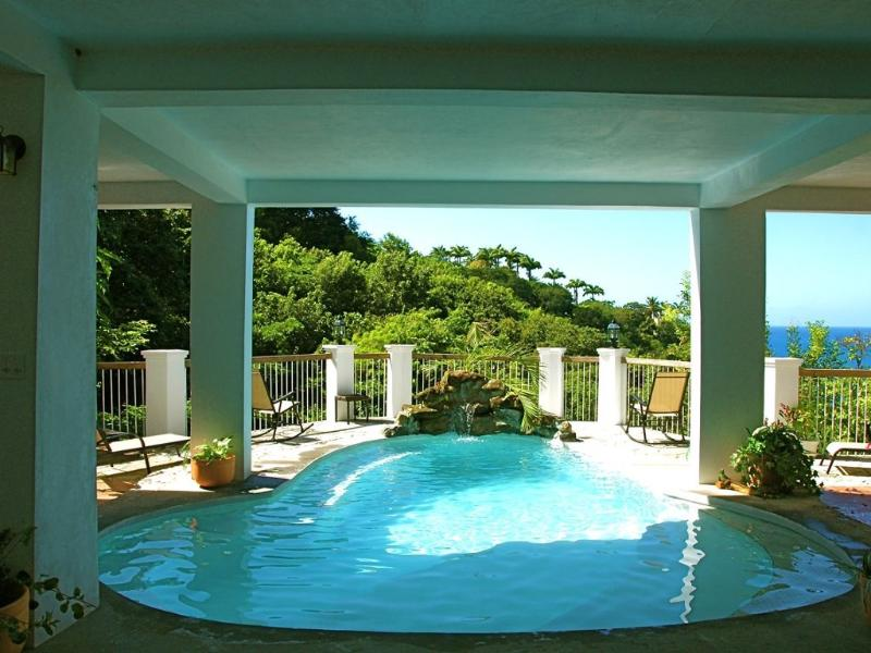 "Mango Grove ""Hotel Lobby"" Pool - Mango Grove (also For Sale) - Woodlands - rentals"