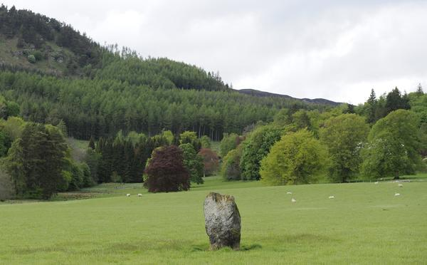 View of Dane's Stone from the large lounge area window - 2 Bedroom Bungalow at the base of  Ben Vrackie - Pitlochry - rentals