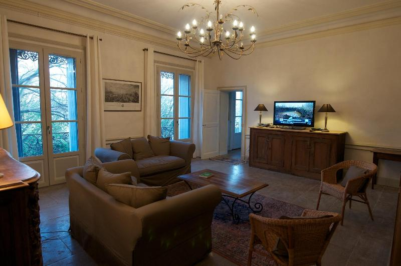 Living room - Large apartment in heart of Montpellier - Montpellier - rentals