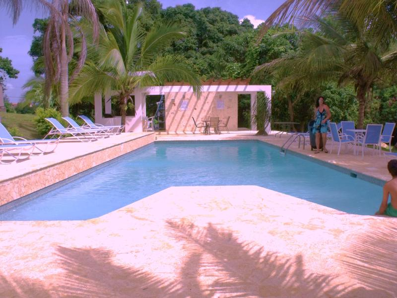 Villa Bonita pool - Villa Bonita - 8 apts $110 ea or less p/n s-50! - Isabela - rentals