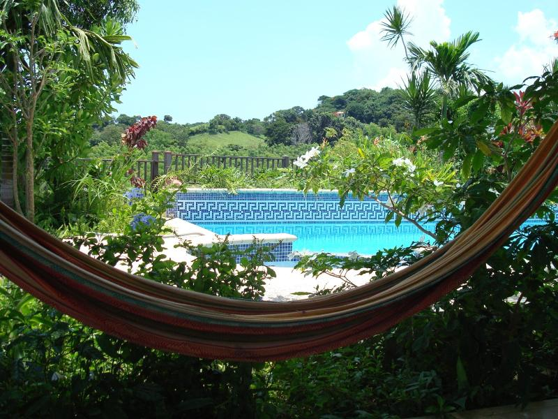View of pool and mountains from hammock - Rincon Vista - Rincon - rentals