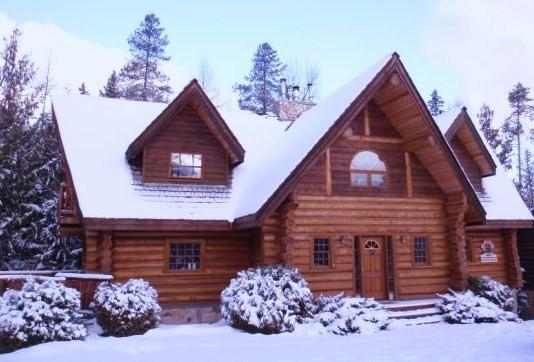 Chalet in the Winter - Mountainside Log Chalet at Fernie Alpine Resort - Fernie - rentals