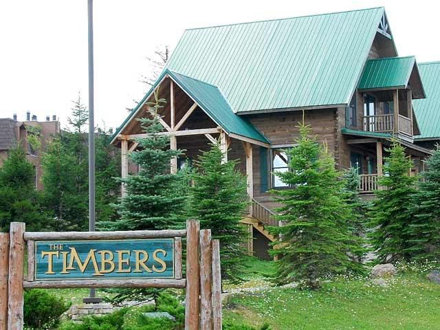 Timbers 5: Large free standing 5 bedroom house. - Timbers - 5 - Snowshoe - rentals