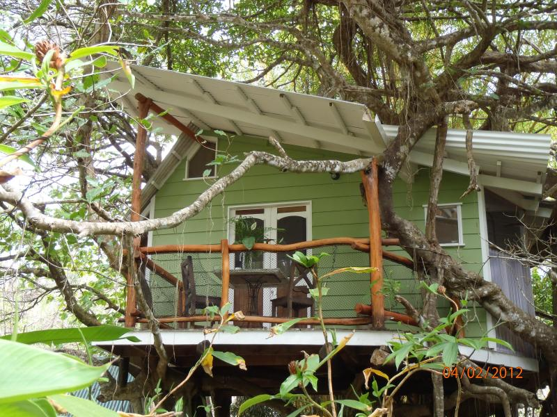 Playa Selva Tree House nestled in a Banyan - Romantic, Unique 1 BR Tree House- Close to Beach! - Mal Pais - rentals