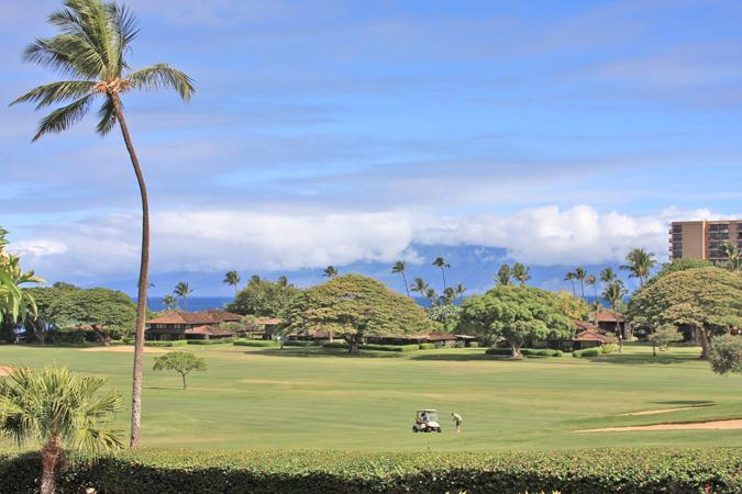 Kaanapali Beach 2BR/1BA Ocean View -Great Location - Image 1 - Lahaina - rentals