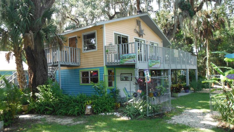 View From the Road - Old Homosassa Tree House - Homosassa - rentals
