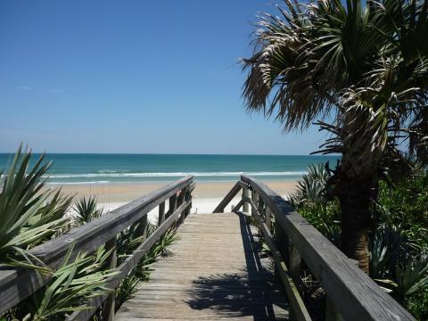 Walkway to beautiful New Smyrna Beach - Award Winner ! / Beautiful 3/2 Condo - New Smyrna Beach - rentals