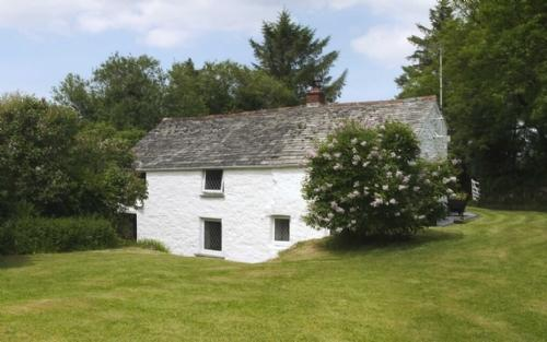 PRIMROSE COTTAGE, Camelford, Cornwall - Image 1 - Camelford - rentals