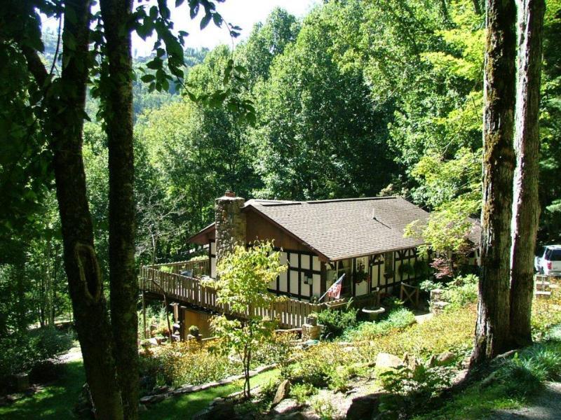 Gabriel's Nest - Gabriel's Nest - Wolf Laurel Resort - Mars Hill - rentals