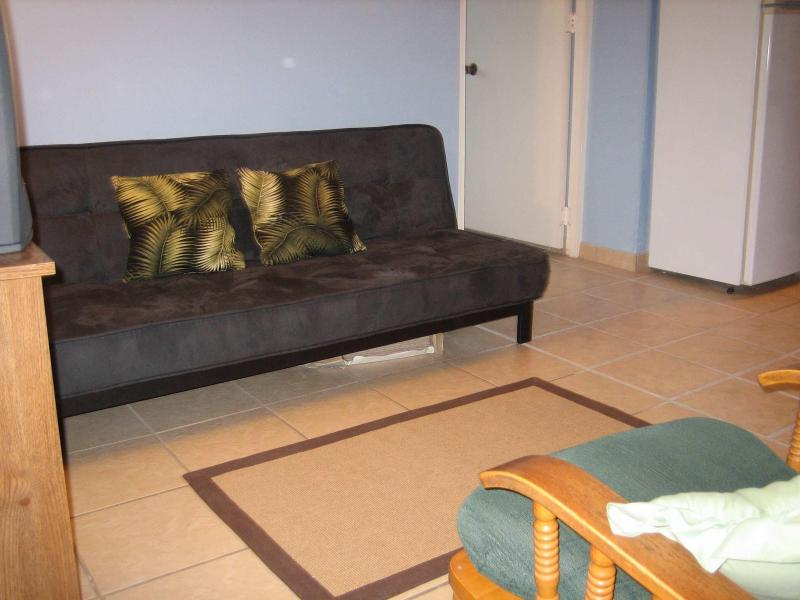 Living Room Area - 1 bedroom condo San Juan's Condado Area - San Juan - rentals