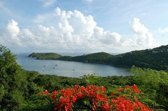 View  - Cocoa Reef - Saint John - rentals
