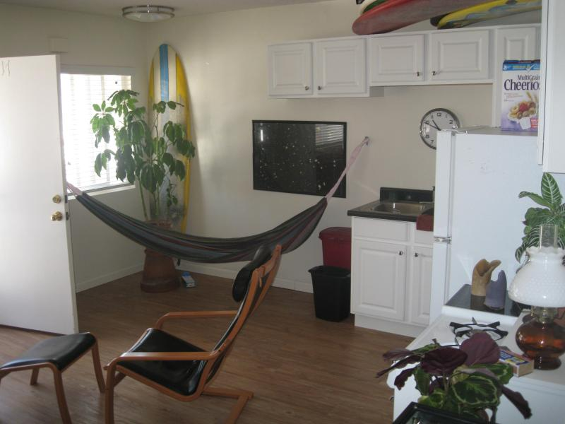 1 Bedroom - N. San Diego: Encinitas - On Beach! - Image 1 - Encinitas - rentals