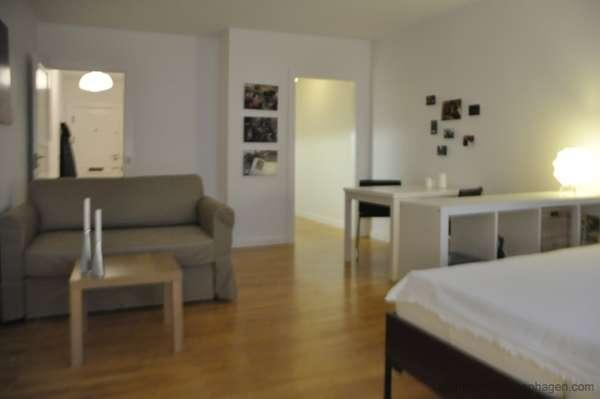 Copenhagen - 140001 - Image 1 - Copenhagen - rentals