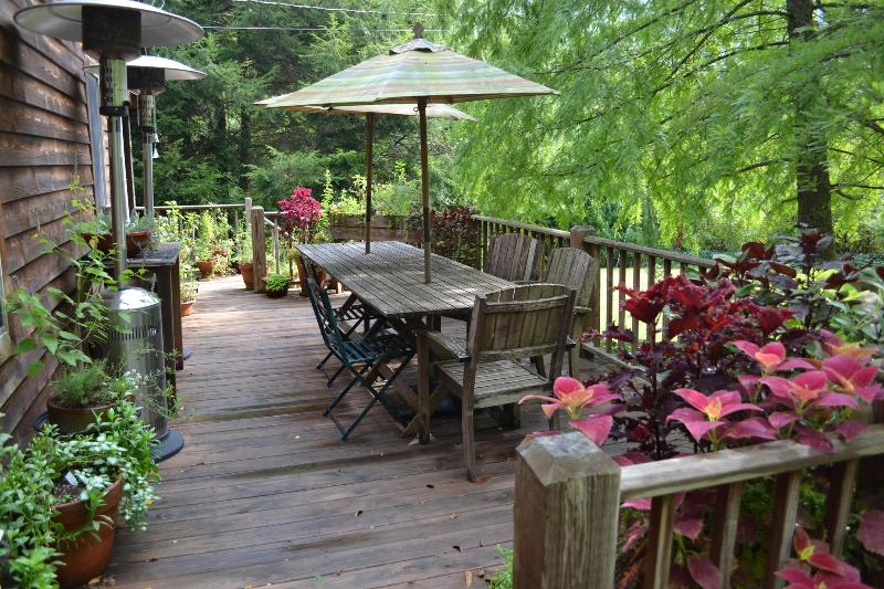 Front Porch - Butterfly Farm Blue Ridge Mountains Hot Springs NC - Hot Springs - rentals