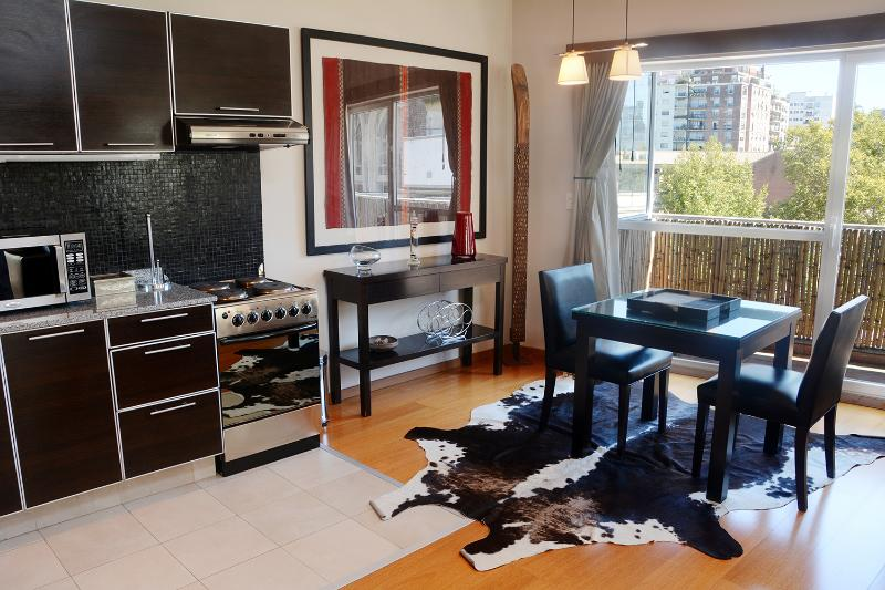 Spacious Studio with Private Terrace in Recoleta - Image 1 - Buenos Aires - rentals