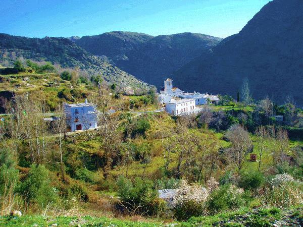 The village - Casa Barbara - La Taha - rentals