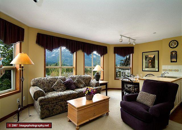Living Area - Aspens #355, 1 Bdrm Slopeside Unit, Ski Hill View, Ski in Ski out, Free Wifi - Whistler - rentals