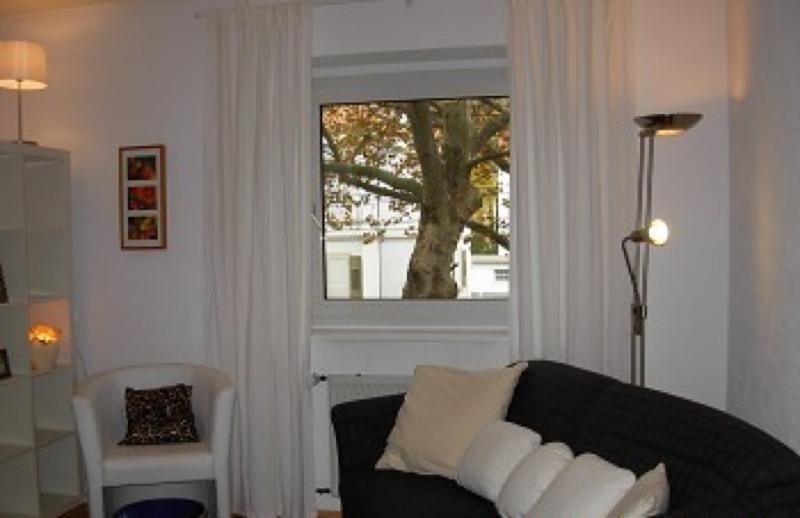 Vacation Apartment in Heidelberg - convenient, fully furnished, bright (# 2227) #2227 - Vacation Apartment in Heidelberg - convenient, fully furnished, bright (# 2227) - Heidelberg - rentals