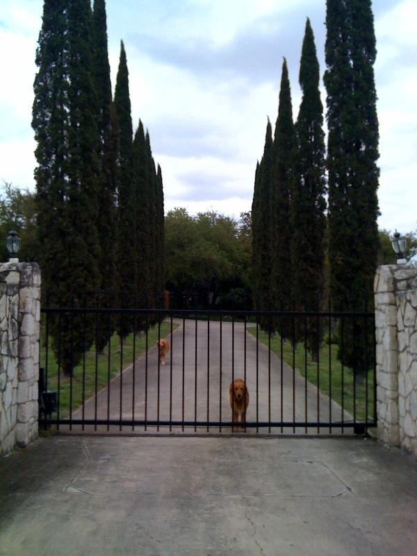 Front Entrance to Property - Texas Barn House, 2 Bdrm on Estate in Med Center - San Antonio - rentals