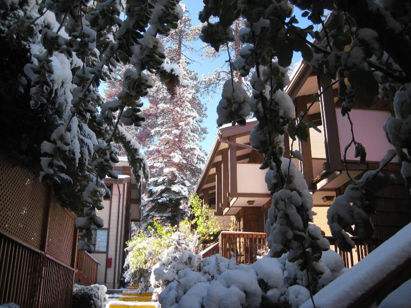 Snow Summit, Big Bear Lake, San Bernardino Mtns, Inland Empire - Stylish 2BR Award Winning Condo - Big Bear Lake - rentals