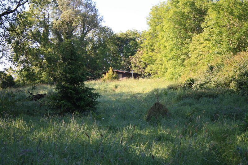 Eco Cabin with private field - Mill House Eco Cabin - County Meath - rentals