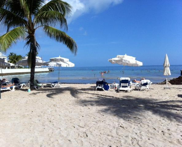 SOUTHERNMOST BEACH,  3  SHORT  BLOCKS  AWAY, SOUTHERNMOST CAFE STEPS FROM BEACH, GREAT HAPPY HOUR! - LA DOLCE VITA, OLD TOWN!!  STEPS TO DUVAL!! SLEEPS 2-4, 3 BLOCKS TO SOUTH BEACH! - Key West - rentals