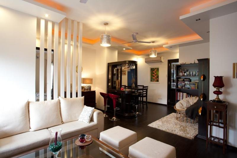 Living Room - Designer Serviced Apartment for Rent-Central Delhi - New Delhi - rentals