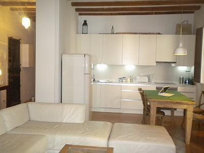 Beautiful lounge with free wifi and SAT TV (UK) - Fabulously furnished spacious apartment in El Born - Barcelona - rentals